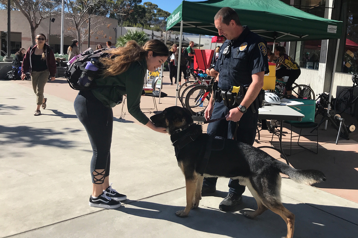 Cal Poly K9 Dogs